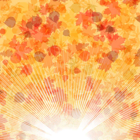Autumn leaves background.   Vector
