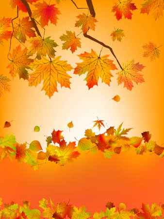autumn leafs: Autumn card of colored leafs with copy space for your text. EPS 8 vector file included