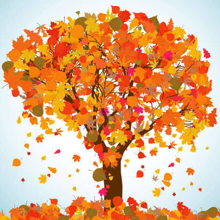 decompose: Beautiful autumn tree for your design.