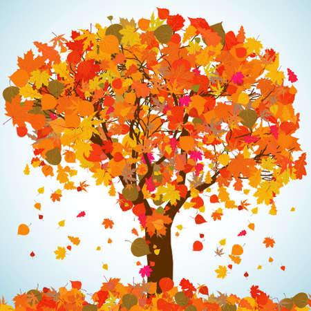 Beaux arbres automne pour votre design.