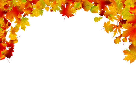 leaf fall: Autumn colored leaves framing large space for copy. Illustration