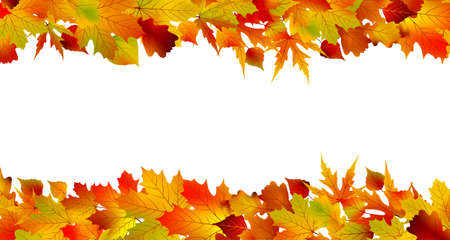 edges: Colorful autumn border made from leaves, isolated on white background.