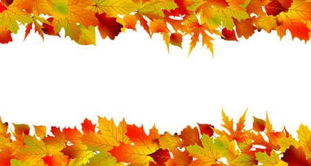 rimmed: Frontera oto�o coloridas hechas de hojas, aisladas sobre fondo blanco.
