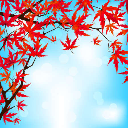 Red Japanese Maple leaves against blue sky. EPS 8 vector file included Stock Vector - 9910182