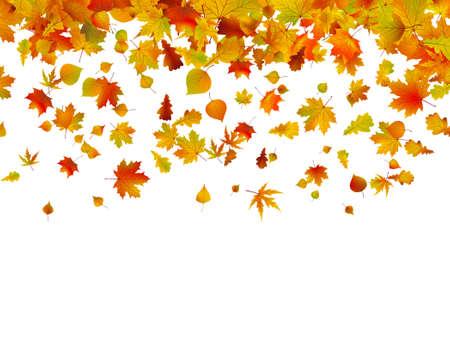 Hintergrund der Blätter im Herbst. 8 EPS-Vektordatei enthalten