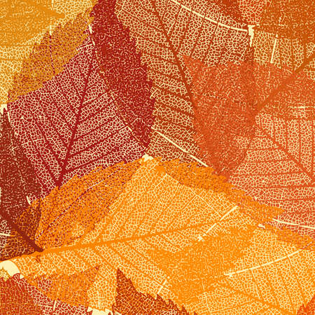 Dry autumn leaves template