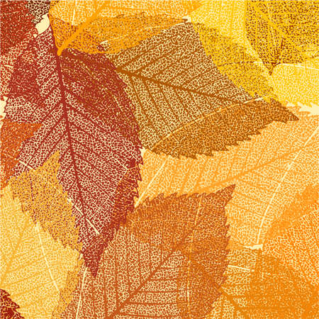 Dry autumn leaves template  file included  Vector