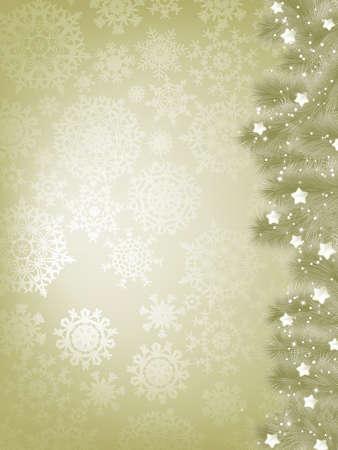 Elegant christmas background with christmas snowflake