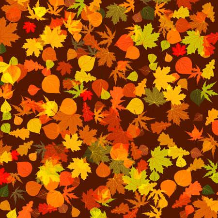 profusion: Autumn leaves, bright background.  Illustration