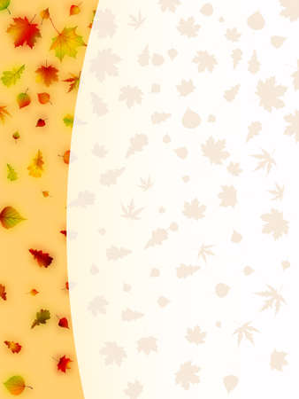 Colorful autumn leaves card  EPS 8 vector file included Vector
