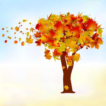 Érable, feuille d'automne automne fichier EPS 8 vecteur inclus Vecteurs