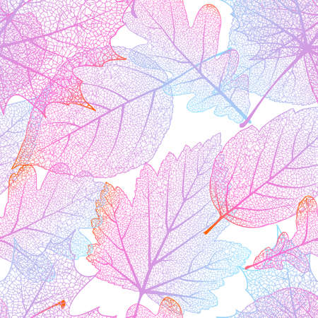 elm: Seamless with autumn leaves on white background