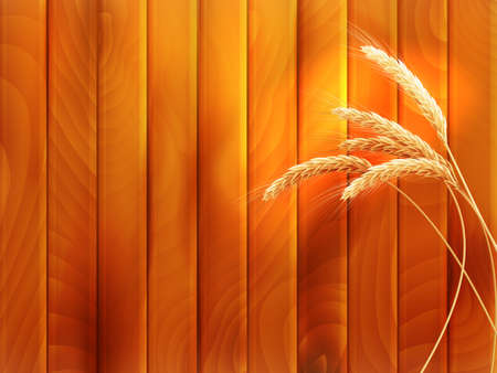 fall harvest: Wheat spikes on wooden board