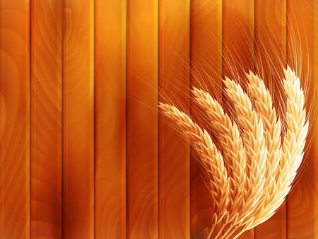 Wheat on wooden autumn background.   Vector