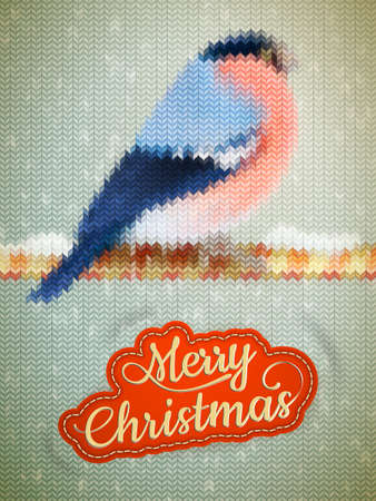 bullfinch: Christmas label on a knitted Bullfinch background.