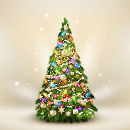tree branch: Christmas fir tree on elegant beige.