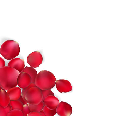 rose petals: Valentine card - red rose petals. EPS 10 vector file included