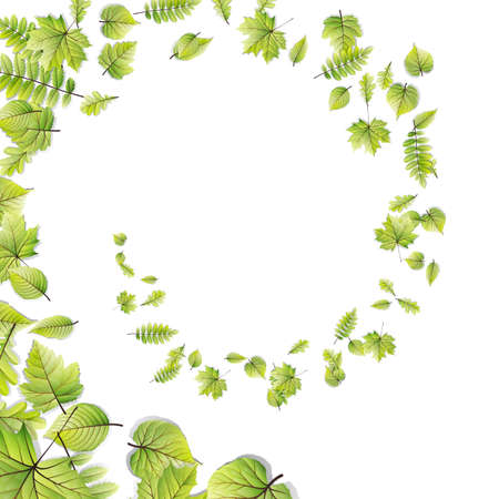 greenness: Green leaves frame isolated on white background. EPS 10 vector file included