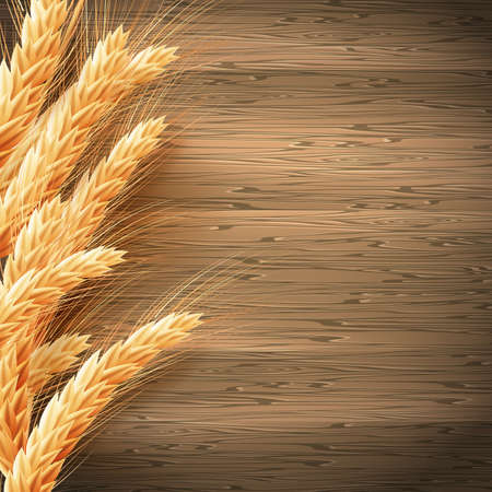 ear of corn: Wheat on the wood background.
