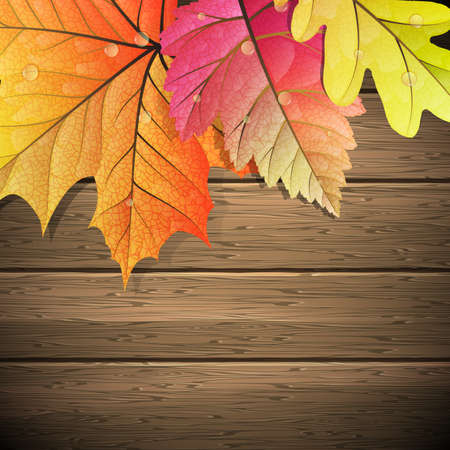 copy space: Autumn Leaves over wooden background. With copy space.
