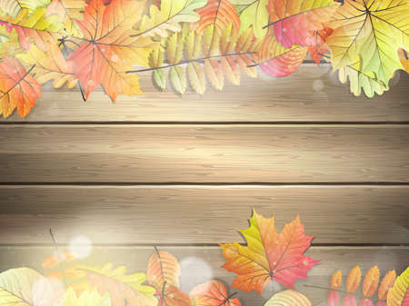 planks: Wooden planks with autumn leaves.