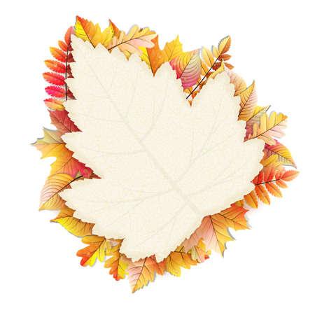 fall leaf: Autumn frame with fall leaf.