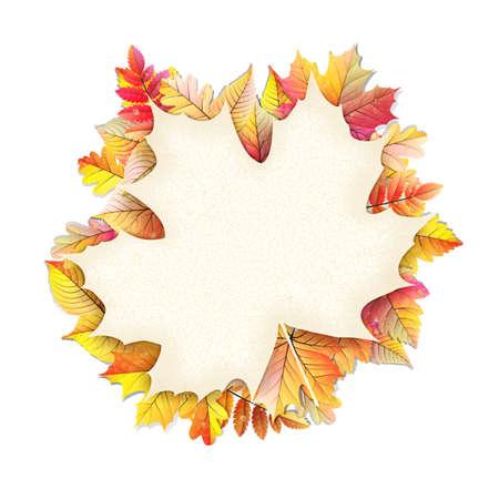 autumn leaf frame: Autumn frame with fall leaf.