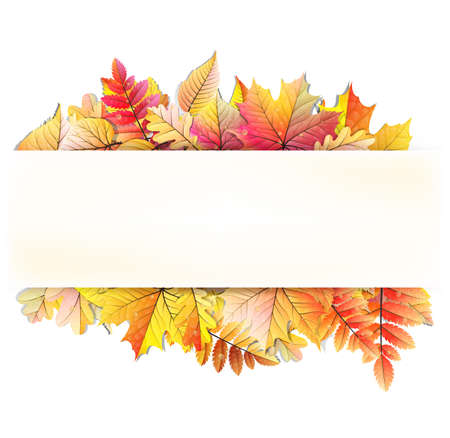 fall foliage: Autumn frame with fall leaf.  Illustration