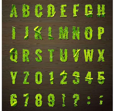 leaf lettuce: Vegetarian design - letters lettuce leaf.