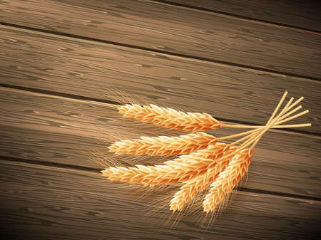 borders plants: Wheat on wooden background. EPS 10 vector file included