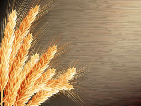 borders plants: Wheat on wooden background.  vector file included