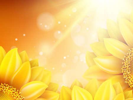 Macro SunFlower Background with bokeh.