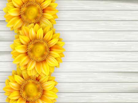 bovenaanzicht plant: Sier zonnebloemen op houten achtergrond.