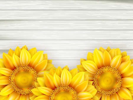sunflowers: Ornamental sunflowers on wooden background. EPS 10 vector file included Illustration