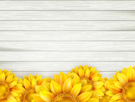 plank: Ornamental sunflowers on wooden background. EPS 10 vector file included Illustration