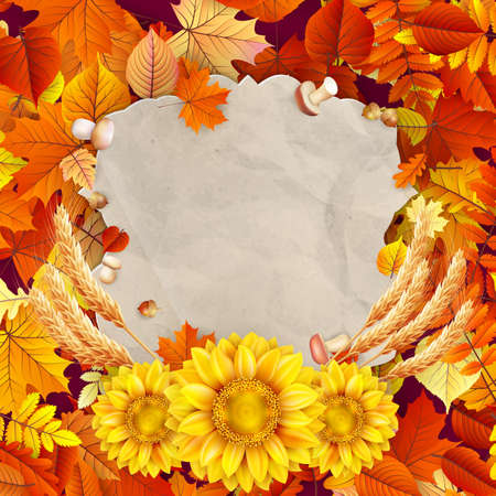 place card: Autumn vintage greeting card on colorful leaves background  Illustration