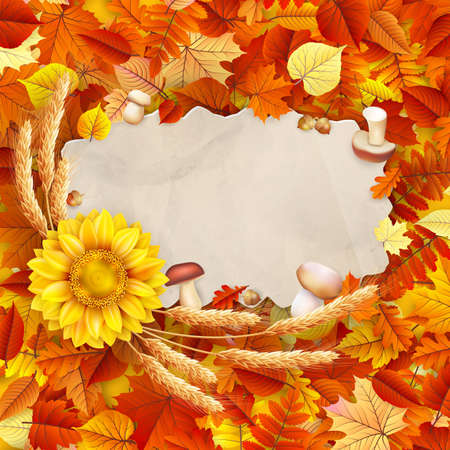 Autumn vintage greeting card on colorful leaves background copy space.