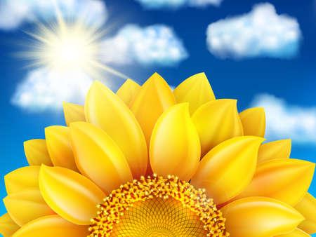 sunflower seed: Beautiful sunflower against blue sky with clouds. EPS 10 vector file included Illustration