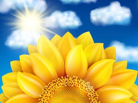 girasol: Hermoso girasol contra el cielo azul con nubes. Archivo EPS 10 vector incluido