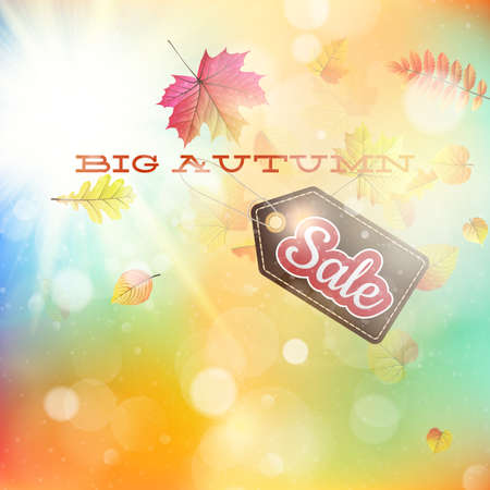 dof: Autumn sales template on a soft backgroung, shalow DOF, can be used to design packages of goods during autumn sales. EPS 10 vector file included
