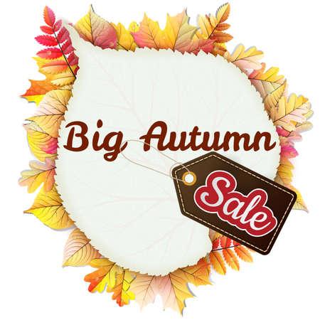 autumnal: Autumnal frame in the shape of fallen leaf Big Sale.  Illustration