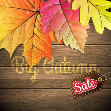 autumn leaves background: Yellow wet autumn leaves Sale poster on the background a dark old wood. EPS 10 vector file included Illustration