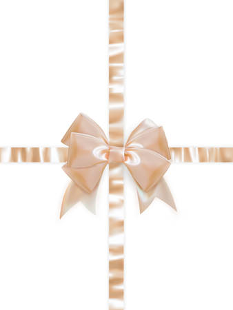 tilt views: Beautiful bow on white background. EPS 10 vector file included