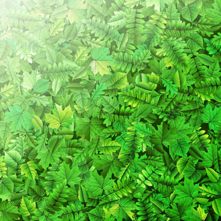foliage: Green leafs background. EPS 10 vector file included Illustration