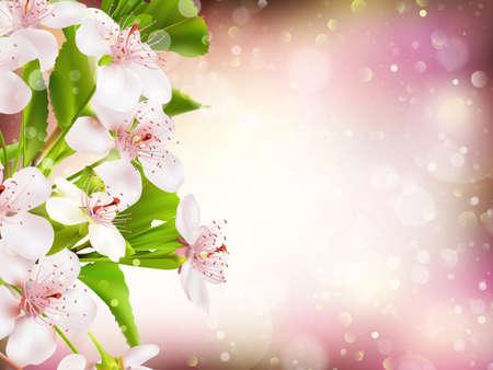 pistil: Spring border background with pink blossom. EPS 10 vector file included