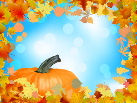 Fall leaves with pumpkin and sky background, fall harvest. EPS 8 vector file included Illustration