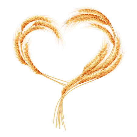and wheat: Wheat ears Heart isolated on the white background. EPS 10 vector file included