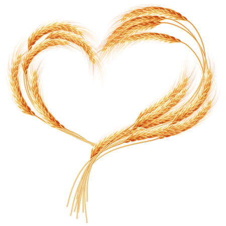 Spighe di grano cuore isolato su sfondo bianco. File EPS 10 vettore incluso Archivio Fotografico - 51241923