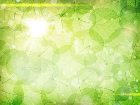 Green leaves background. EPS 10 vector file included Banco de Imagens - 51470966