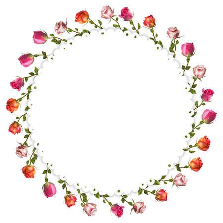 ottimo: Rose rosse e bianche della carta. file vettoriale incluso